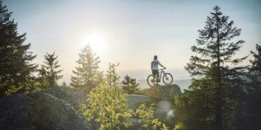 E-Mountainbike